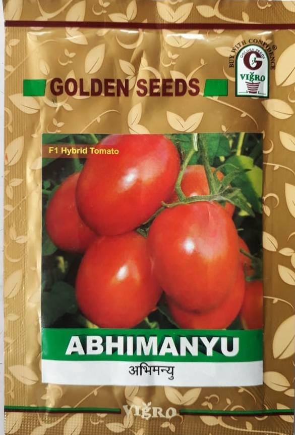 Abhimanyu (अभिमन्यु)- 10gm