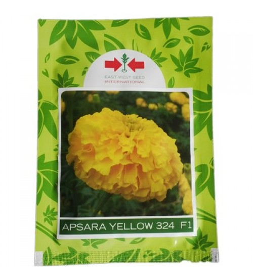 Apsara Yellow- 1000 Seeds