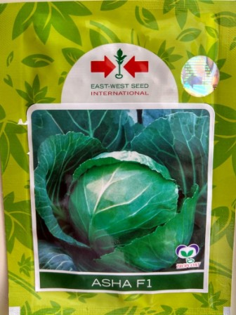 Cabbage Asha- 10Gm