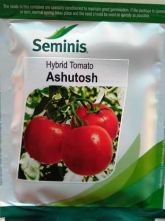Ashutosh (आशुतोष)- 3500 Seeds