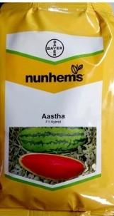 Astha (आस्था)- 1000 Seeds