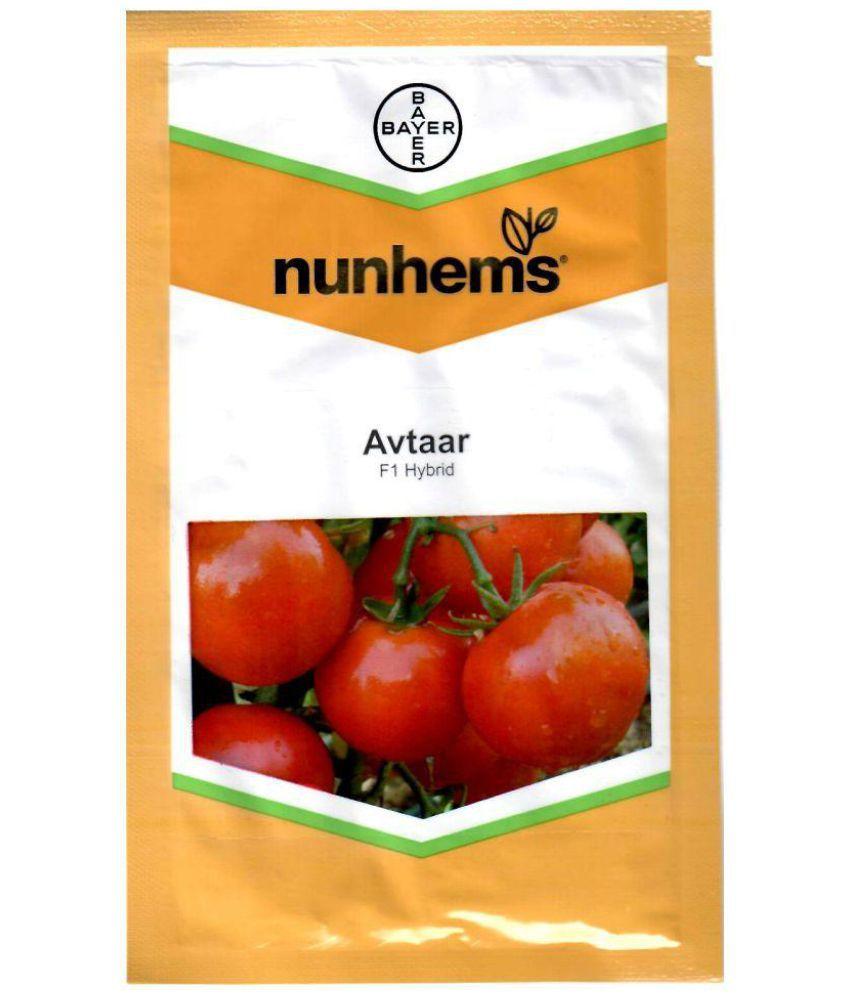Avtar- 3000 Seeds
