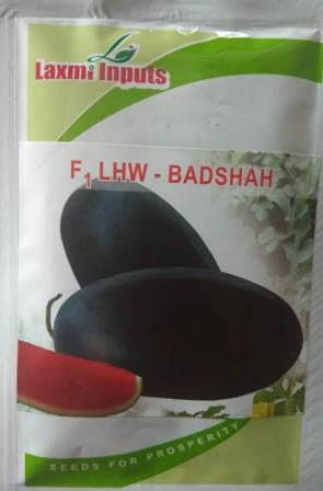 Badshah (बादशाह)-50gm
