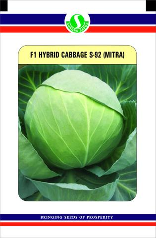 uploads/CABBAGE_S-92.jpg