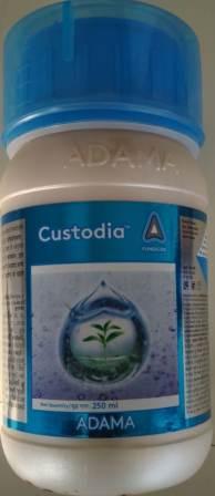 Custodia (कस्टोडिया)- 250 Ml