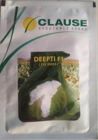 Deepti- 10 gm
