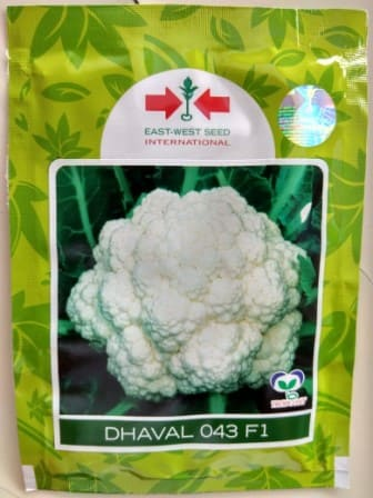 Cauliflower Dhaval- 10gm