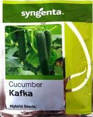 Kafka- 1000 Seeeds