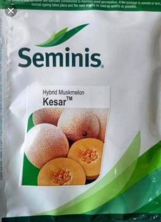 Kesar (केसर)-25 Gm