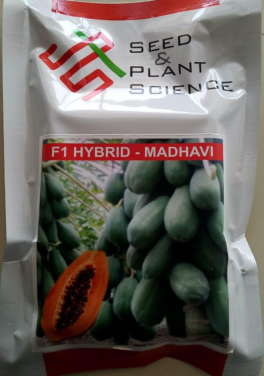 Madhavi- 10 Gm