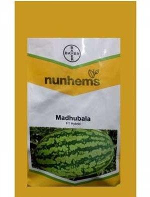 Madhubala- 1000 Seeds