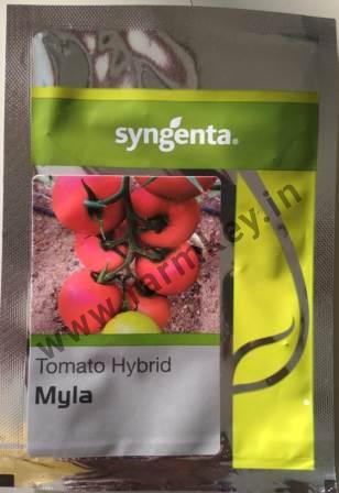 Myla- 3000 Seeds