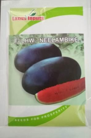 Neelambike-50 Gm