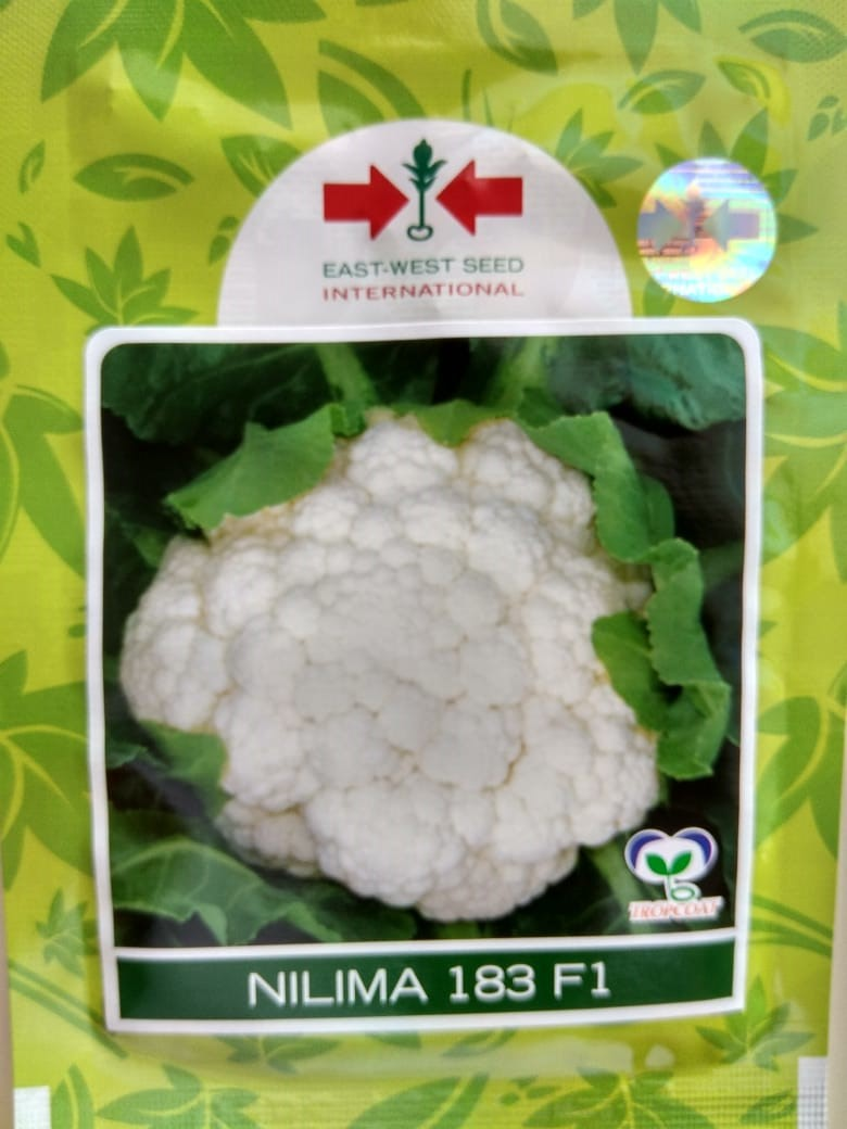 Cauliflower Nilima 183- 10gm