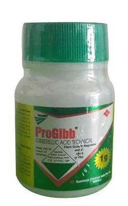 Progibb (प्रोजिब)- 5 gm