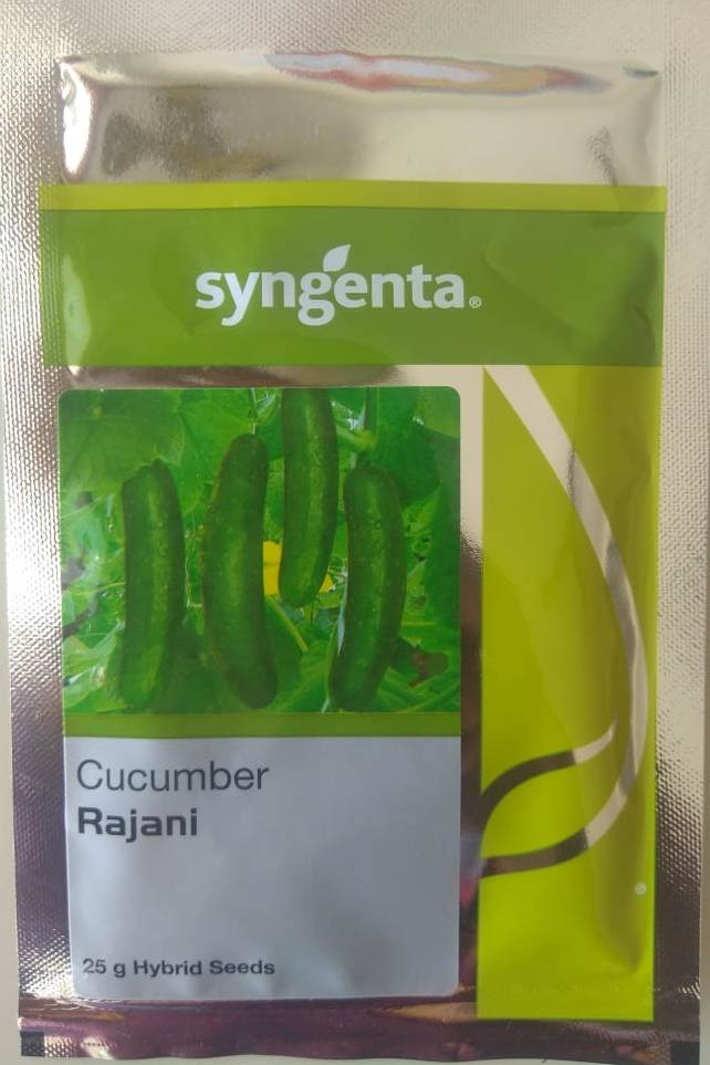 Rajani Cucumber 25gm