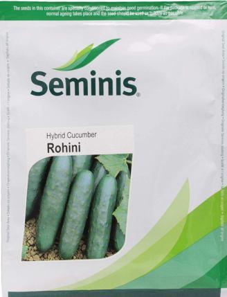 Rohini (रोहिणी)- 800 Seeds