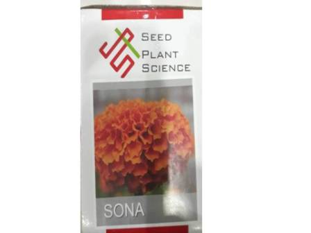 Sona(सोना)- 5gm