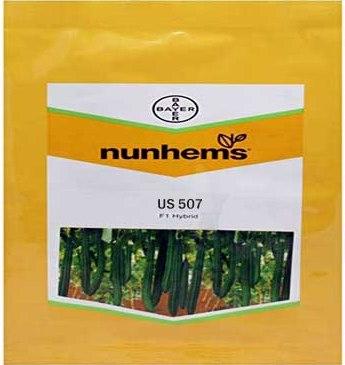 US 507- 1000 Seeds