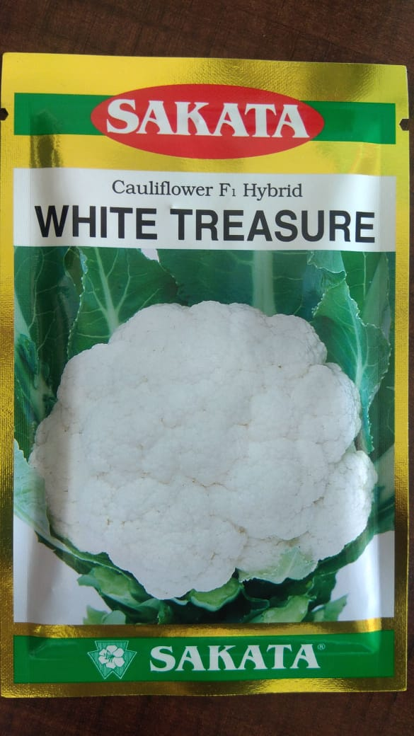 White treasure- 10gm