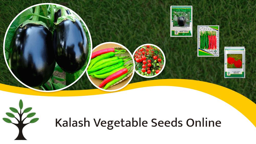 Buy Kalash Vegetable Seeds Online At Best Price On Farmkey's Online Store