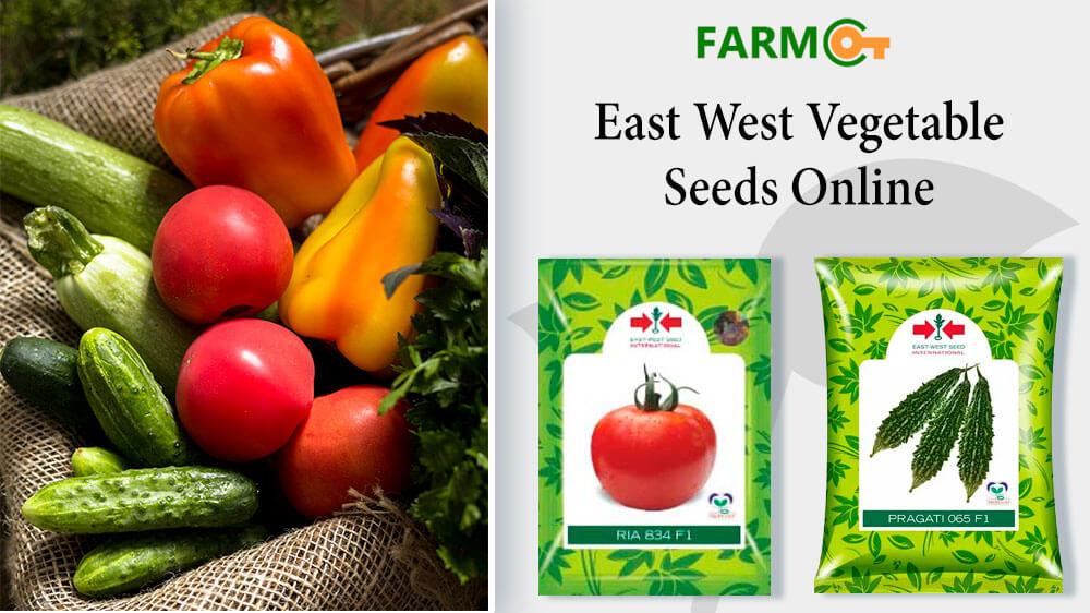 Buy East West Seeds Online in India