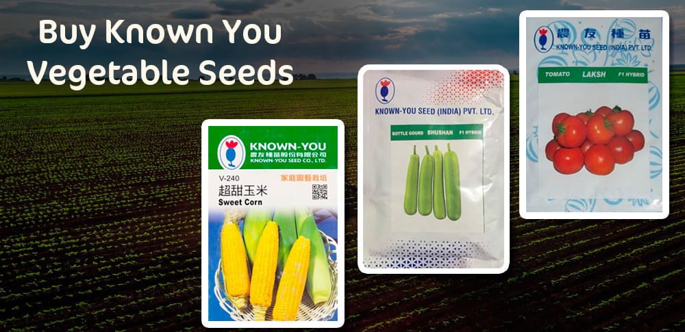 How To Expand A Garden With Known You Vegetable Seeds?