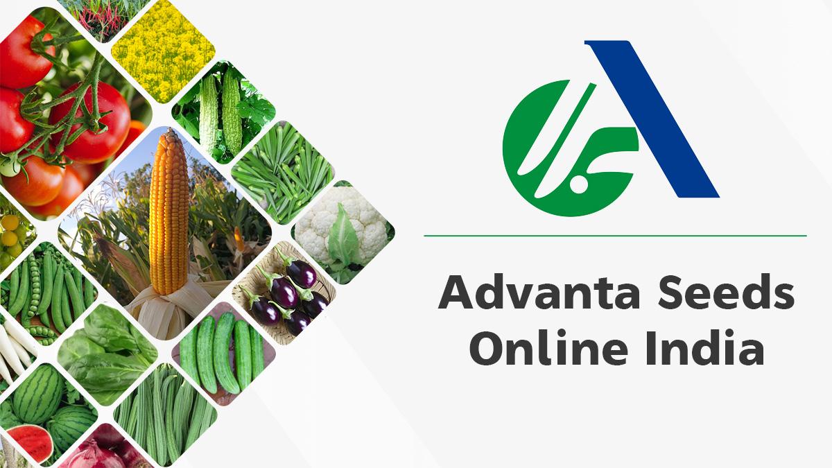Advanta Seeds Online India | Golden Seeds