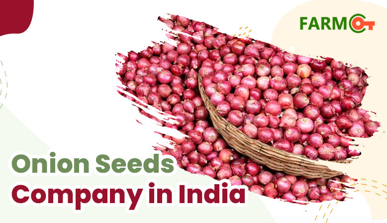 Which Is The Best Onion Seeds Company In India?