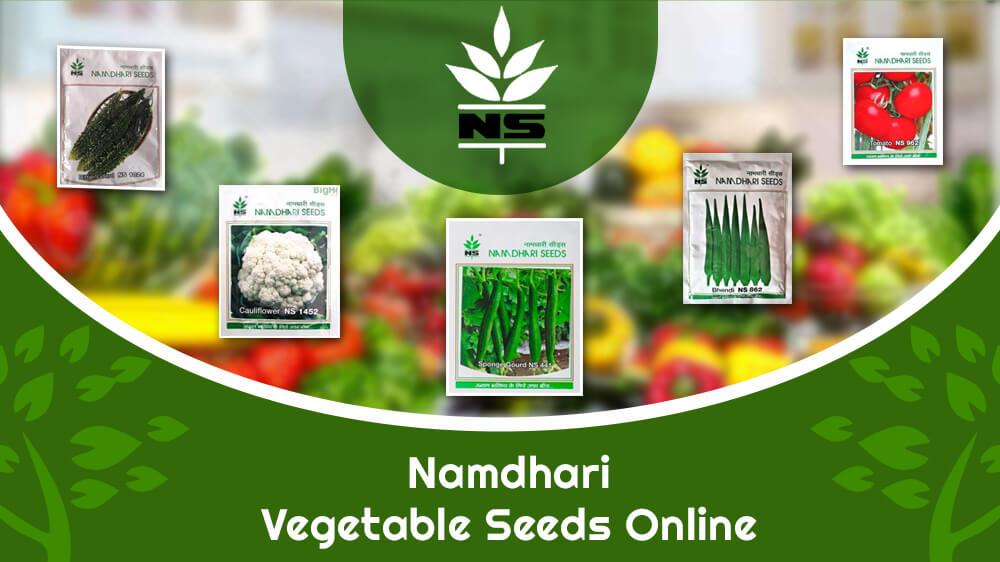 Where To Buy Quality Namdhari Vegetable Seeds Online?