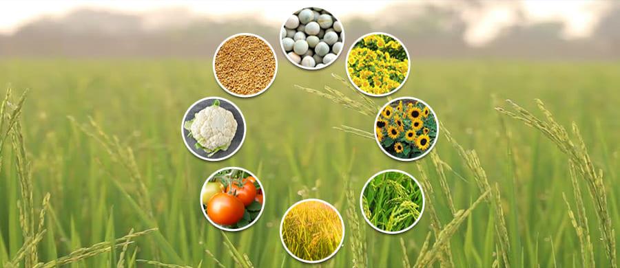 THE KEY TO SUCCESS FOR EVERY INDIAN FARMER ? FARMKEY