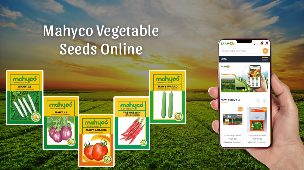 How to Buy Quality Mahyco Vegetable Seeds Online?