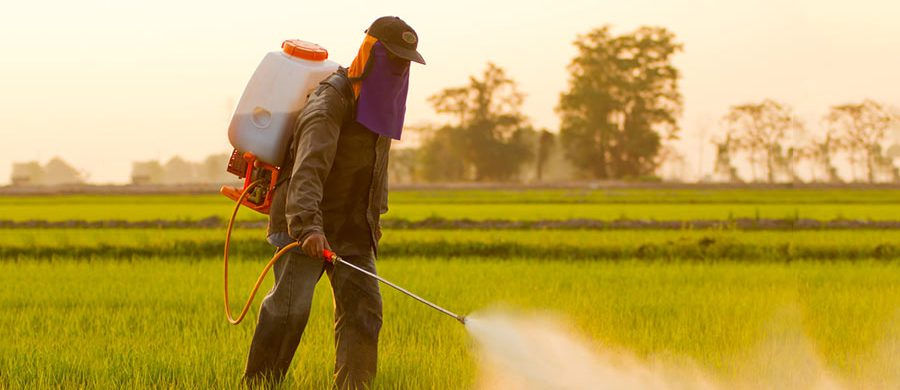 PROTECT YOUR CROP WITH WORLD?S BEST PESTICIDES FROM FARM KEY