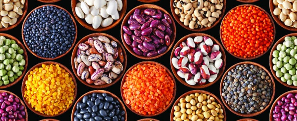 INDIAN SEED INDUSTRY- SMALL SNAPSHOT