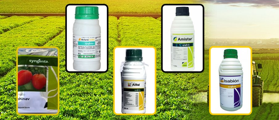 WITH SYNGENTA, ENSURE THE MOST ABOUNDING AND AFFLUENT CROP