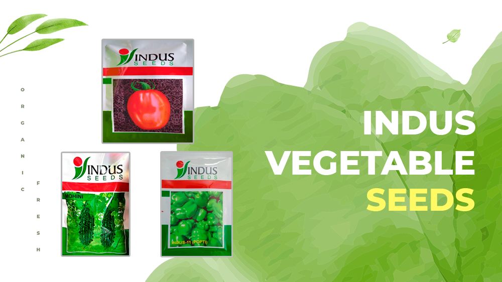 100% Surety Of Better Yield With Indus Vegetable Seeds Through Farmkey