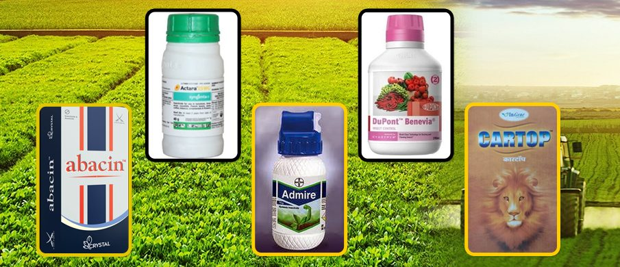 ENSURE 100% HARMLESS YIELD WITH THE BEST INSECTICIDES