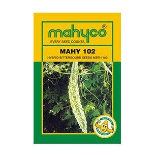 MAHY 102 (Bitter Guard)