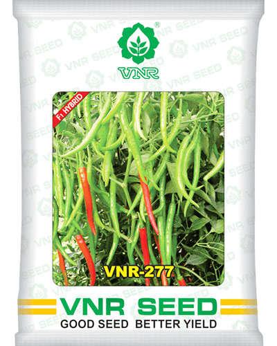 VNR-277 Chilli - 10 gm