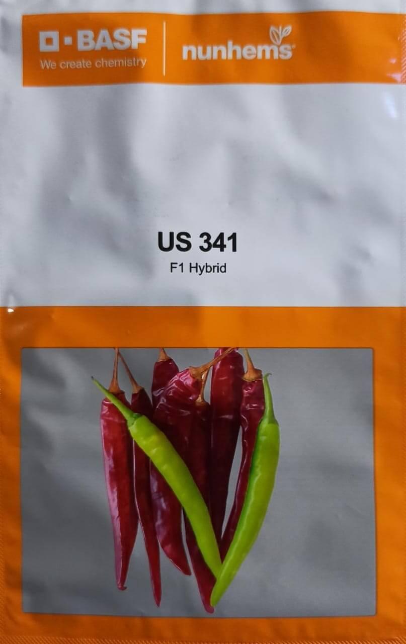 US 341 - 1500 Seeds