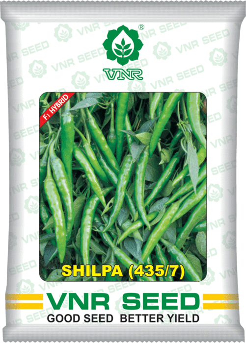 Shilpa- 435-7 Chilli - 10 GM