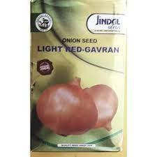 jindal Gavran Onion Seed - 500gm