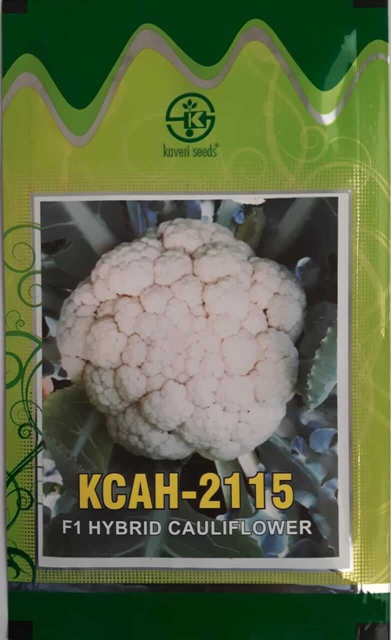 Kaveri Cauliflower 2115 - 10gm