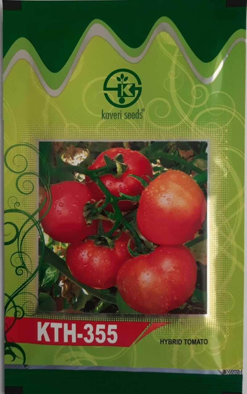 Kaveri Tomato KTH 355 - 10gm