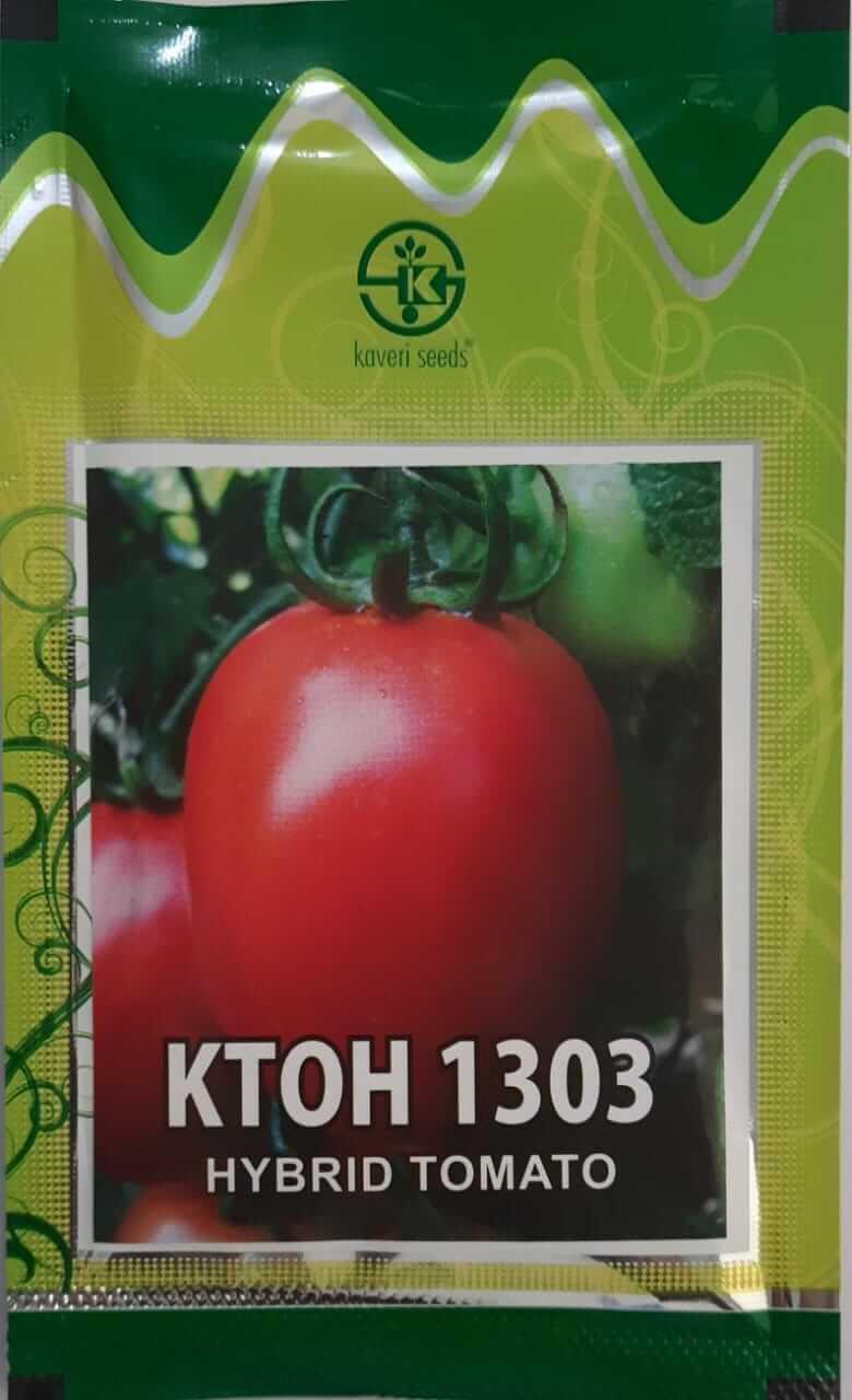 Kaveri Tomato KTOH 1303 - 10gm