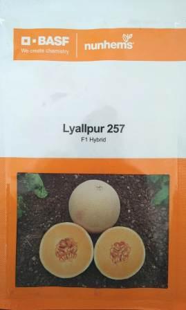 uploads/product/Lyallpur_MM.jpg
