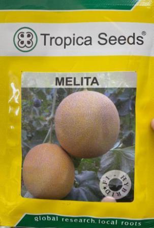 Melita - 1000 Sds