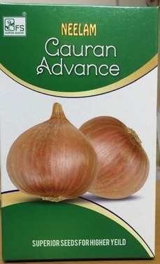 Neelam Gauran Onion Seed-1kg