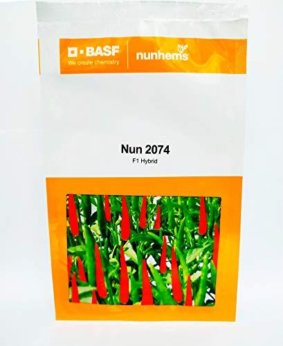 Nun 2074- 1500 Seed
