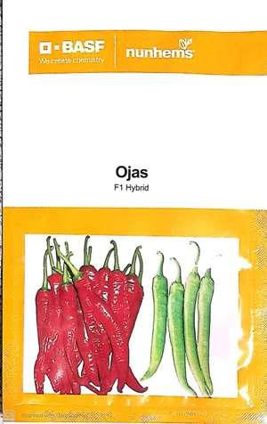 Ojas- 1500 seeds